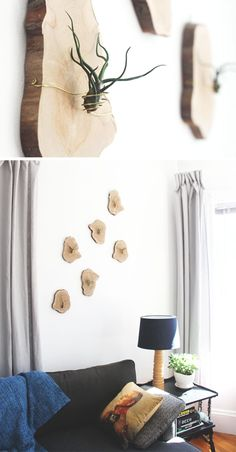 9 Ideas For Including Tree Stumps In Your Home Decor // Thin slices of a tree stump became the base for these DIY airplant holders and are an easy way to bring in plant life and get in on the tree trunk trend.