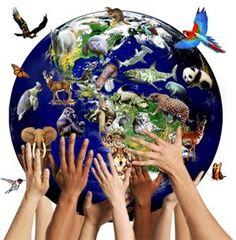 conservar la biodiversidad nos brinda un mejor mundo ... cuidemolos entre todos