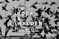 TV ROCK & Walden – See Me Run (Original Mix) [Neon Records] | Deejays Muzik