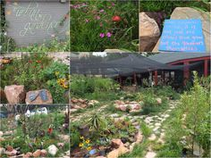Urban Gardener, 27Boxes, Melville, South Africa | One Footprint On The World Wordpress, Footprint, Stepping Stones, South Africa, Urban, World, Outdoor Decor, Home Decor, The World