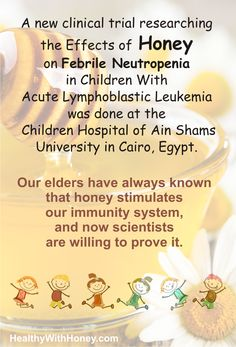 "Leukemia. The worse word ever invented. Fighting it is almost always in vain. Yet, there are hopes for better results.  A new clinical trial on the *effects of honey on febrile neutropenia in children with ALL"" ended recently.  See details here:  http://healthywithhoney.com/the-effects-of-honey-on-febrile-neutropenia/  #leukemia #ALL #benefitsof honey #honeyforneutropenia"