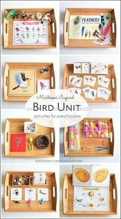 Montessori-inspired bird unit activities for preschoolers - Preschool Activities Montessori Trays, Montessori Science, Montessori Homeschool, Montessori Classroom, Montessori Toddler, Preschool Curriculum, Montessori Materials, Preschool Science, Preschool Activities