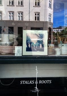 Soon to come! My summer print exhibition. Swing by EcoEgo/Decor Farver, Vendersgade 5, Israels Plads, Nørreport, København/Copenhagen! Copenhagen, Tardigrade, Plads, Natural History Museum, By, Denmark, Mansions, House Styles, Nature