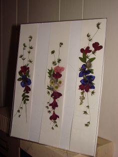 pressed flowers | Pressed Flowers
