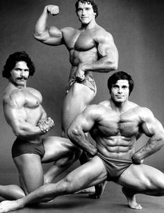 Coyne, Arnold, and Franco