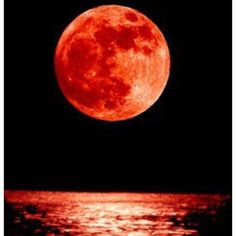 Beautiful Moon, Blood Moon, Full Moon, Travel Around The World, Cool Pictures, Nature, Color, Books, Photography