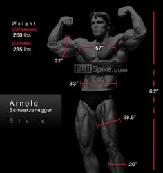 Arnold's Measurements