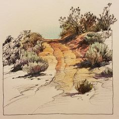 Country lane Watercolor Sketchbook, Pen And Watercolor, Watercolor Landscape, Art Sketchbook, Watercolor Paintings, Pen And Wash, Nature Sketch, Nature Journal, Sketchbook Inspiration