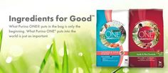 Purina One Coupons Free Printable Coupons, Free Printables, Hd Wallpapers For Pc, Wallpaper Pc, Cat Food, Free Samples, Walmart, Park, Products