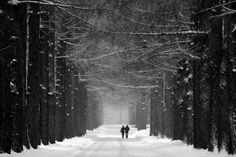 winter photo by Kai Ziehl on Fantasy Landscape, Urban Landscape, Landscape Photos, Monochrome Photography, Black And White Photography, Street Photography, Landscape Photography, Photography Ideas