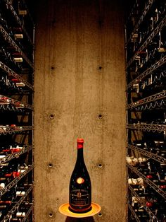 Modern Wine Cellar Design, Pictures, Remodel, Decor and Ideas - page 20