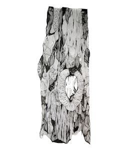 Claire Scully - Tree Bark  Again I like the detail as it gives the images texture and this time the shapes mad in the bark are more abstract and interesting.