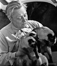 Sergei Obraztsov, the founder of the Central Puppet Theatre in Moscow, was the first person to bring Thai cats to the Soviet Union in the 1960s.