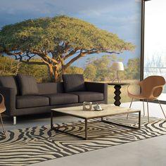 African Acacia National Park Hwange, Zimbabwe L x W Wallpaper East Urban Home Zimbabwe, Acacia, 3d Wallpaper Mural, Wallpaper Ideas, Tree Wall Murals, Parc National, Outdoor Furniture Sets, Vibrant Colors, Interior