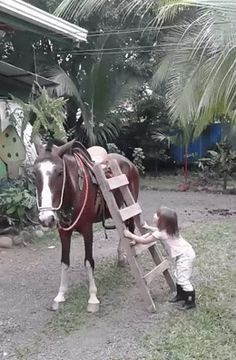 Some great gifs for laughs today …