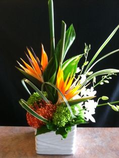 Birds of Paradise, Hydrangea, Pin Cushion Protea, Dendrobium Orchids, Miniature Green Hydrangea, Variegated Aspidistra and loops of Lily Grass designed in a modern wavy ceramic cube.