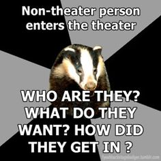 Backstage Badger (I lived with one of these)