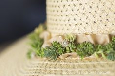 How to Make a Succulent Hat - Succulents and Sunshine