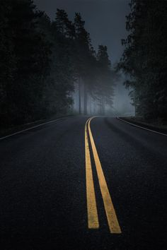 Forest Road #photography