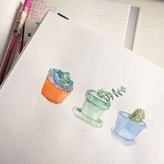 Some very small sweet potted plants. Happy Monday! . . #art #sketch #sketchbook #watercolor #gouache #succulents #cacti #drawing #painting #paints #arte #artsy #artistsoninstagram #artist #artoftheday