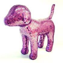 Disco Puppy