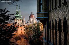 Budapest Bug Budapest Hungary, Barcelona Cathedral, City, Building, Travel, Autumn, Viajes, Fall Season, Buildings