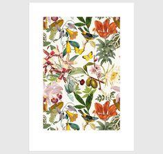 Affiche botanique, univers graphique printanier. Déco de printemps, été, oiseaux, feuilles, fleurs, fête des Mères ! Frais de port OFFERTS !
