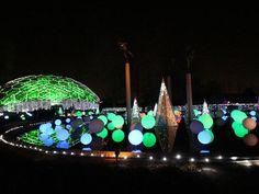 Missouri Botanical Gardens   Garden Glow Winter Show    635849323270166713 IMG 7941.JPG