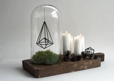 Wooden slab with terrarium, candles, and pinecones.