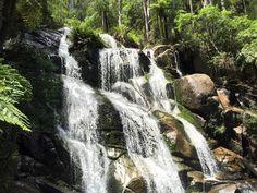 Tooronga Falls, Noojee