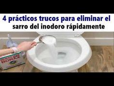 PON 1 AJO EN EL INODORO - Salud Más Curiosidades The Creator, Youtube, Tips, Health Motivation, Health Tips, Health And Wellness, Cleaning Recipes, Cleaning Hacks, Deko