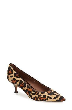 Donald J Pliner 'Rome' Pointy Toe Pump (Women) | Nordstrom ......     Kitten heel pumps are coming back in, not sure how I feel about that LOL.
