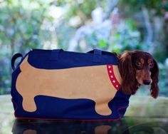 Love this dachshund dog carrier!  Beau needs this so his head can stick out! :)
