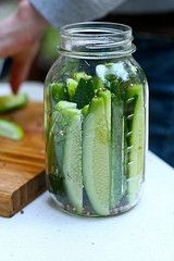 Copycat Claussen Kosher Dill Pickles - Refrigerator - Trending Refrigerator for sales. - Make your own super-crunchy pickles with this recipeand stop paying out the nose for something that is so simple to make in your own kitchen. Kosher Dill Pickles, Canning Pickles, Claussen Pickles, Garlic Pickles, Canning Tips, Home Canning, Canned Food Storage, Snacks, Vegetarian Recipes
