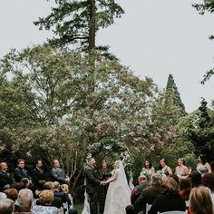 Devan and Joe's Rhododendron Garden wedding in Portland, Oregon // Photo by Hazelwood Photo // Vendors: Bridal Bliss, Bramble Floral, Jein Keing Makeup, Anna's Bridal, Kassab Jewelers, 100 Layer Cake // movingpictureweddings.com