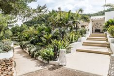 PURE HOUSE IBIZA is an amazing Boutique and Lifestyle Hotel in Ibiza island in Spain. Just a Paradise if you asking from me. Outdoor Plants, Outdoor Rooms, Ibiza Style Interior, Porches, Spanish Exterior, Ibiza Island, Hotel Ibiza, Small Villa, Terrace Garden Design