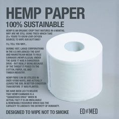 Why don't we use hemp paper?