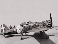 Cirenaica 1941 il comandante del settore est della Libia, Ferdinando Raffaelli, pronto a decollare con un caccia Macchi 200, 373 Squadriglia, 150° Gruppo Autonomo Caccia . Sotto la cabina di guida l'insegna del rango, stella rossa su sfondo azzurro, Generale di Brigata Aerea