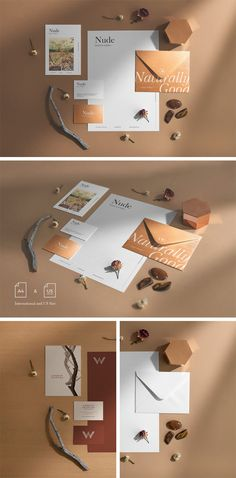 Download Psd Brochure Holder Mockup Template Free Download Designs Canyon Yellowimages