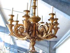 A Carved Gilt Wood 6 Branch Chandelier - Stock - Blanchard Collective Branch Chandelier, Chandeliers, Antique Dealers, Bedroom Lamps, Contemporary Furniture, Floor Lamp, Carving, Ceiling Lights, Lighting