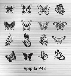 Apipila P43 - Apipila