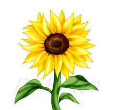 free printable sunflower stencils sunflower clip art vector clip rh pinterest com sunflower clip art outline sunflowers clip art free