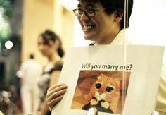 5 kihagyhatatlan lánykérő video.     5 (Genuine) Wedding Proposal Videos You Have To Watch