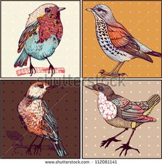 vector set of hand drawn cards with colorful birds