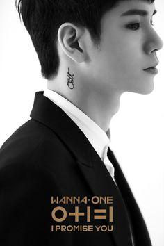 Seongwu (Wanna One) Daniel Jihoon Minhyun Seongwu Kuanlin Sungwoon Woojin JinYoung Jaehwan Daehwi Jisung Ha Sungwoon, Let's Stay Together, Ong Seongwoo, I Promise You, Kim Jaehwan, Photo B, Jinyoung, 3 In One, Golden Age