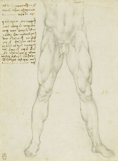 Recto: A nude man from the waist down, and notes. Verso: Two sketches of nude men seen from the front and behind