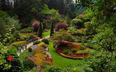 Buchart Gardens . What I imagine heaven will be like...