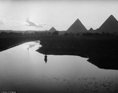 Taken in 1936, this image shows a farmer standing by the floodplains of the Nile river with pyramids in background...