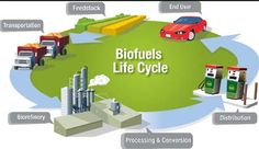 Life cycle of Biofuels