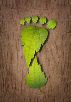 5 Speedy Ways to Start Decreasing Your Carbon Footprint http://www.ways2gogreen.com/blog/post/2012/01/03/Guest-Post-5-Speedy-Ways-to-Start-Decreasing-Your-Carbon-Footprint.aspx